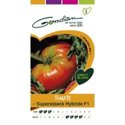 Gondian - Tomate Supersteak HF1