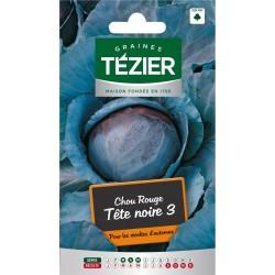 Tezier - Chou Rouge Tête noire 3