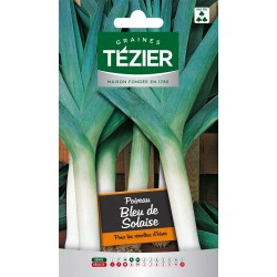 Tezier - Poireau bleu de Solaise Fort Grammage
