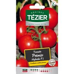 Tezier - Tomate Prémio HF1 (grappe)