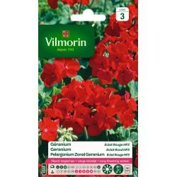 Vilmorin - Geranium Eclat Rouge