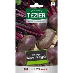 Tezier - Betterave noire d'Egypte Fort Grammage
