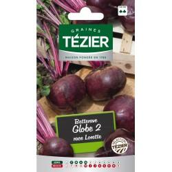 Tezier - Betterave Globe 2 race Lorette