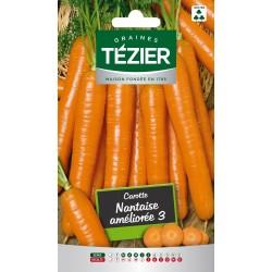 Tezier - Carotte Nantaise améliorée 3 Fort Grammage