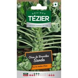 Tezier - Chou de Bruxelles Sanda