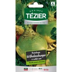 Tezier - Rutabaga Wilhelmsburger à collet vert
