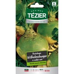 Tezier - Rutabaga Wilhelmsburger à collet vert Fort Grammage