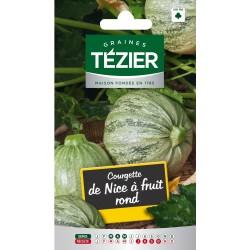 Tezier - Courgette de Nice à fruits ronds