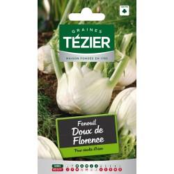 Tezier - Fenouil Doux de Florence