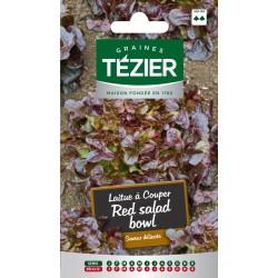 Tezier - Laitue à couper Red salad bowl (G,N,)