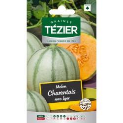 Tezier - Melon Charentais race Igor
