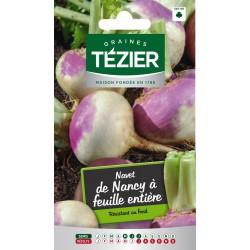 Tezier - Navet de Nancy à feuille entière