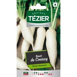 Tezier - Navet de Croissy