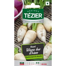 Tezier - Navet Blanc dur dhiver