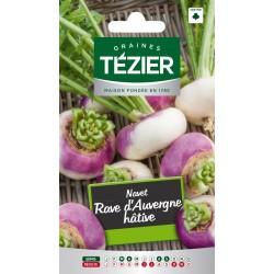 Tezier - Navet Rave d'Auvergne hâtive