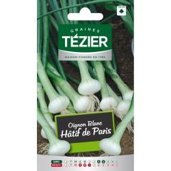 Tezier - Oignon Blanc hâtif de Paris