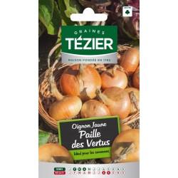 Tezier - Oignon Jaune Paille des Vertus
