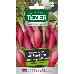 Tezier - Oignon rouge de Florence (Rossa lunga di Firenze)