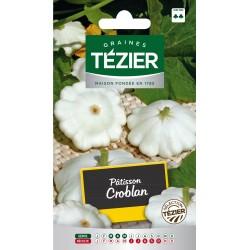 Tezier - Pâtisson Croblan (courgette)