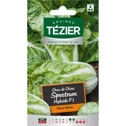 Tezier - Chou de Chine Spectrum HF1