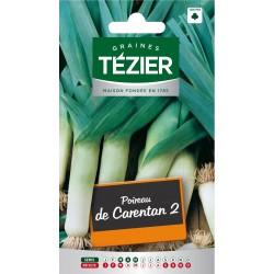 Tezier - Poireau de Carentan 2