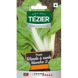 Tezier - Poirée blonde à carde blanche 2