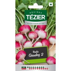 Tezier - Radis Gaudry 2