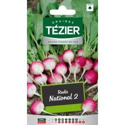 Tezier - Radis National 2