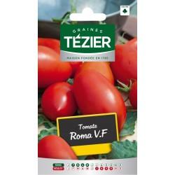 Tezier - Tomate Roma V,F