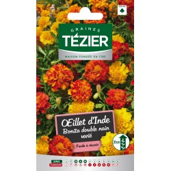 Tezier - Oeillet D'Inde Bonita double nain varié - Fleurs annuelles