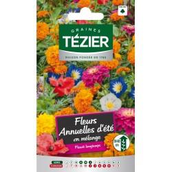 Tezier - Fleurs annuelles d'été en mélange