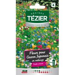 Tezier - Fleurs pour gazon Japonais