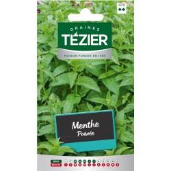 Tezier - Menthe Poivrée