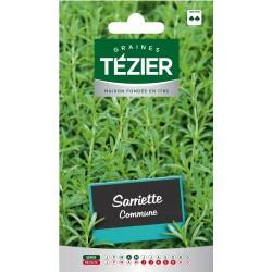 Tezier - Sarriette Commune