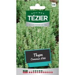 Tezier - Thym Commun d'été