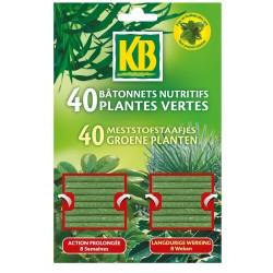KB - Bâtonnet nutritif - plante verte - lot de 40