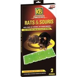 KB Home Défense - Piège à glu pour rats et souris
