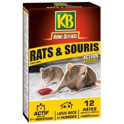 KB Home Défense - Pate appât rat souris - 120 g - lot de 12 pâtes