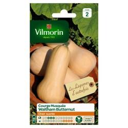 Vilmorin - Courge Musquée Waltham Butternut