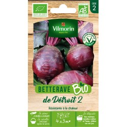 Vilmorin - Betterave Bio détroit 2