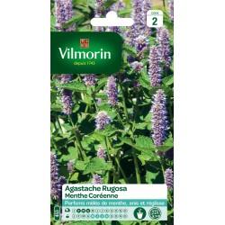 Vilmorin - Agastache Rugosa Vl 2 Menthe De Coree