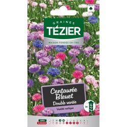 Tezier - Centaurée Bleuet Double variée -- Fleurs annuelles