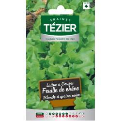 Tezier - Laitue à couper Feuille de chêne Blonde à graine noire