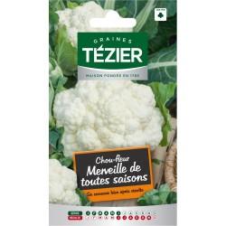 Tezier - Chou-fleur Merveille de toutes saisons