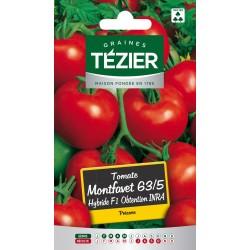 Tezier - Tomate Montfavet 63/5 HF1 obtention INRA