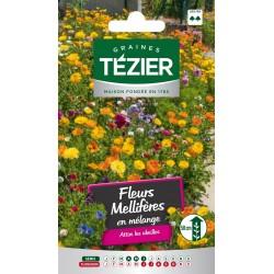 Tezier - Fleurs mellifères en mélange -- Fleurs annuelles