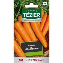 Tezier - Carotte de Meaux