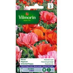 Vilmorin - Pavot Pizzicato Mix