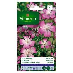 Vilmorin - Coquelourde Rose du Ciel