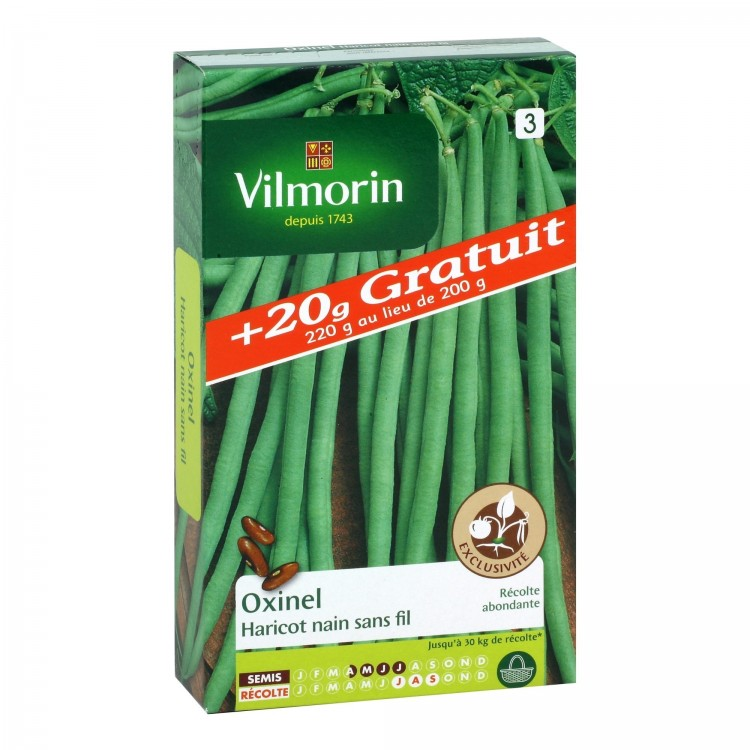 Vilmorin - Oxinel (Création Vilmorin) + 20g gratuits